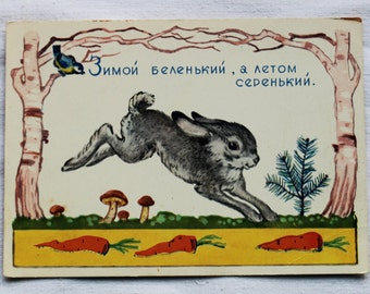"Illustrator Dudnikov. Used Vintage Soviet Postcard ""In winter, white, and gray summer"" Riddle - 1962. Izogiz. Rabbit, Hare"