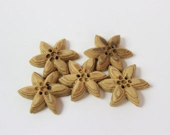 Wooden Alpine star shaped buttons | set of 5