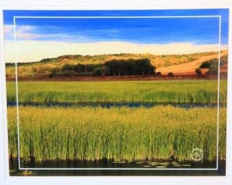 Landscape by Squaw Creek Refuge in Missouri