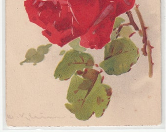Postcard Artist C. Klein Lovely Open Rose And Buds,Unused
