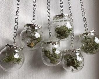 Lichen Botanical Mobile