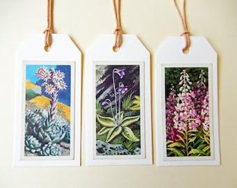 Handmade Gift / Art Tags, Vintage Tea Cards. Wildflowers, Scrapbooking embellishment