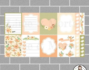 Peach Floral Pack | Full Box Planner Stickers