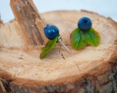 Blueberry earrings studs Stud earrings for girls Blue earrings Bridesmaid gifts Blueberry jewelry Fruit earrings Bridesmaid earrings Unique