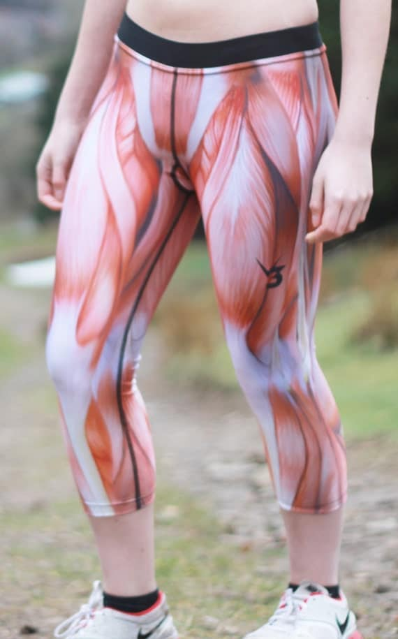 Anatomy workout pants