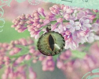 Beautiful Sage Green Cat Eye Necklace, Animal Eye Pendant Series