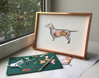 Anatomy of a Dachshund - Paper Collage