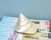 "Large Pearl Trochus Shell - 4"" - seashells/bulk shells/beach decor/beach wedding"