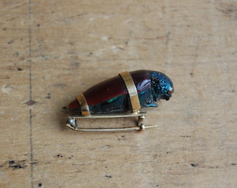 Antique 1890s Victorian insect pin ∙ Victorian beetle brooch