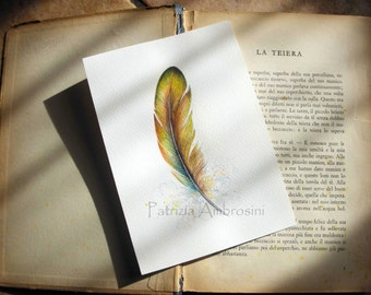 SALE - Original 5x7 Watercolour Feather Study No.30. NOT A PRINT ..Original Painting,fine art-