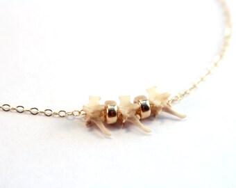 Gold Bone Necklace, Genuine Rattlesnake Vertebrae Necklace, Animal Bone Jewelry, Delicate Gold Necklace, Real Snake Bone Jewelry