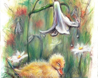 Duck Baby duck duckling - ORIGINAL pastel painting - nursery kids decor baby animal wildlife 'Rainy Day Slumber' Laurie Shanholtzer 11x15