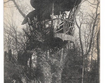 French Tree House, Le Mans, Photo Postcard, c. 1910