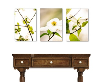 Dogwood Art, Set of 3 Flower Art, Canvas Set, White Flower Photography, Dogwood Wall Decor, White Green Art, Tree Art, 16x24 inch
