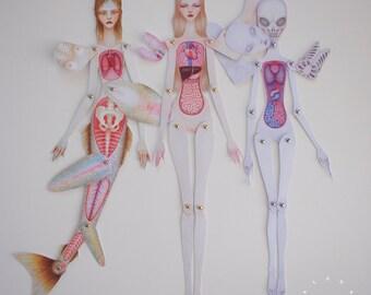 Set of 3 Paper Anatomy Dolls *ASSEMBLED* - Human, Mermaid & Alien