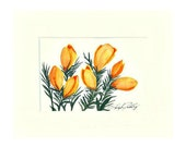 Crocus, Watercolor of Yellow Crocus, 8x10 Matted and Frame Ready