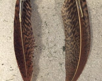 Bird skull feather earrings