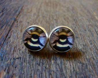 bumble bee stud earrings | insect, bug, black and yellow, summer, gift for women, posts