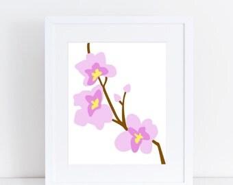 Orchids - 8x10 Print