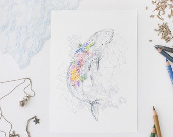 Coral Whale 6x8 Print. A5 Print. Sea Shepherd Charity. Colored Pencil Art. Sealife Art. Wall Art Print. Blue Whale Illustration. Nautical