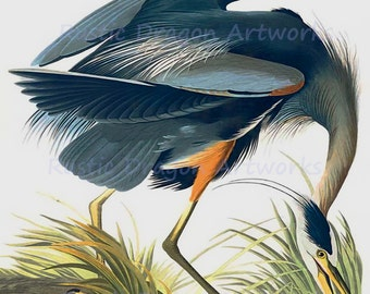 "John Audubon ""Great Blue Heron"" 1827 Reproduction Digital Print Bird Wildlife Nature Wall Hanging"