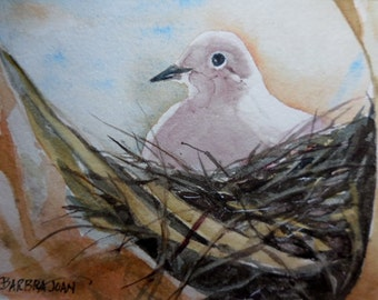 The Dove, Original w/c, dove painting,