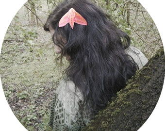 Elephant Hawkmoth hair clip