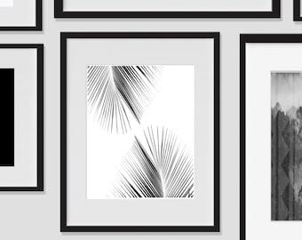 Palm Tree, Wall Art, Tropical Art, Tropical Decor, Digital Art Print, Big Leaf Print, 8x10, Tree, Hawaiian, Exotic Prints, Black and White