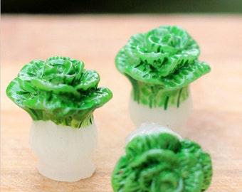 Fairy Vegetable Garden Lettuce  ~ Set of Two