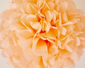 Peach Paper Pom Pom