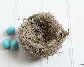 "Bird Nest ""Harvest"" - Handmade"