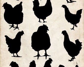 Chicken Silhouette ,12 png Clipart , Instant Download,  clipart