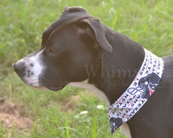 Texans , Texans Dog Collar, Texans pet collar, Texans Cat Collar