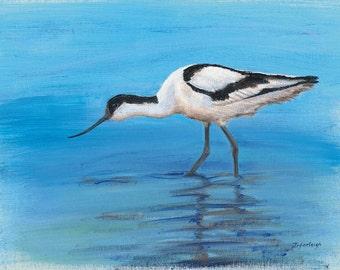 "Original Art Print of ""Avocet"" blue, river, reflections, black and white, bird, wader,"