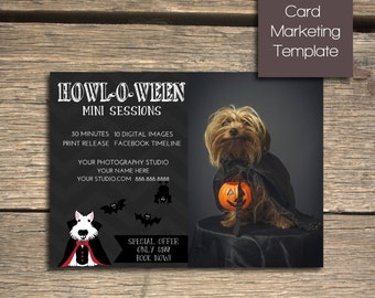 Pet Photography Halloween Mini Session - 7x5 Photoshop Marketing Template - INSTANT DOWNLOAD