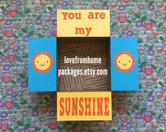 You Are My Sunshine Care Package Flaps