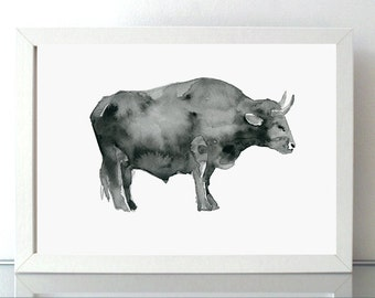 Bull Art Bull Watercolor Painting - Giclee print Bull ink drawing - Animal Painting - Sumi e - Aquarelle cow drawing michelle dujardin