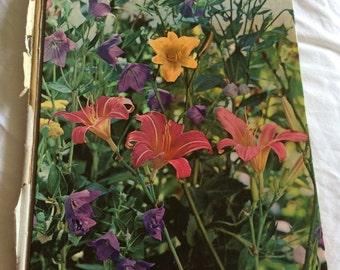 VINTAGE! Perennials guide