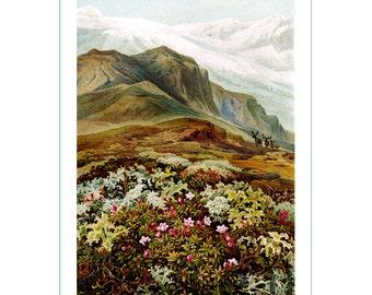 fabric panel - landscape (1)