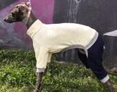 Italian Greyhound onsie / jumpsuit + free snood!