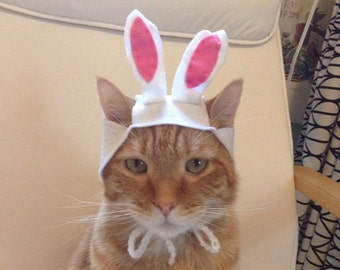 Bunny Hat For Cats
