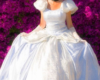 Cinderella dress adult cosplay multiple sizes