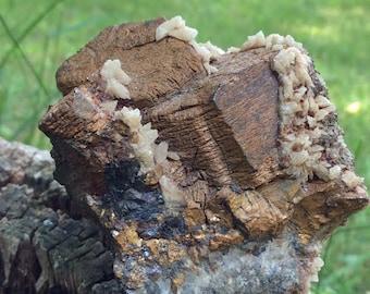 PYRRHOTITE Mineral Specimen - FREE GIFT