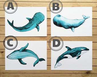 Prints Different Whales A5