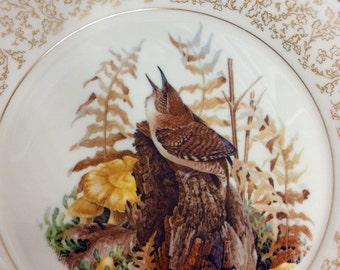 Vintage House Wren by Don Whitlatch for Gorham Fine China 1973 Nature Portraits Vintage Collectible Plate Decor Birds Farmhouse Decor