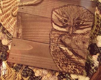 OWL Wall Hanging Media: Wood Burning.
