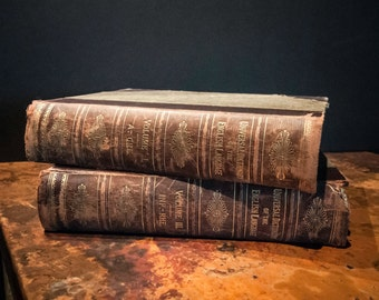 Antique English Language Dictionaries from 1897 Volume One and Two