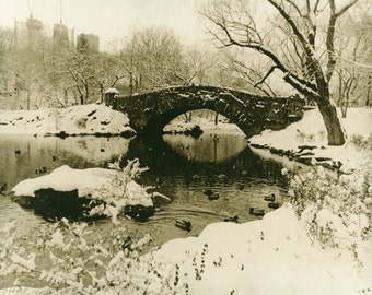 The Central Park in winter. Lith darkroom print.