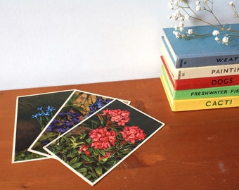 Vintage Postcard set of 3