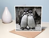 Penguin couple note card - Blank, photo greeting card for any occasion